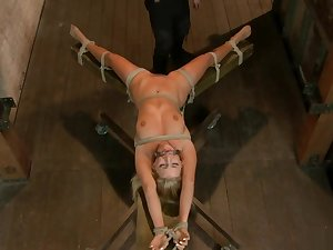 Peaches lezdom tormented on hogtie